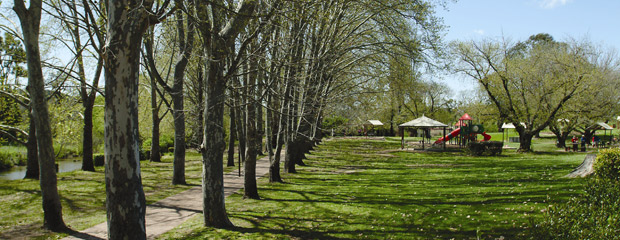 Neilson_Park_with_green_trees_DK