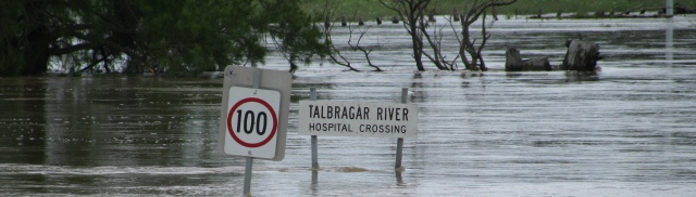 Talbragar Flood 2