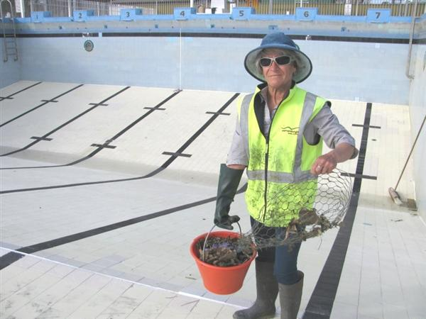 Swimming Pool Opening 2018